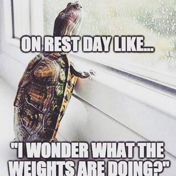 4305ed45fc48a0807dc73c340d18aacf--rest-day-quotes-fitness-gym-quotes