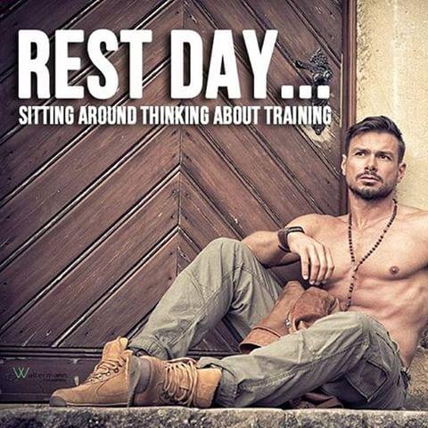 rest guy